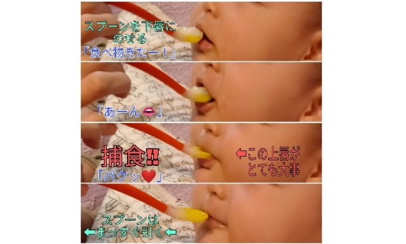 離乳食の食べさせ方